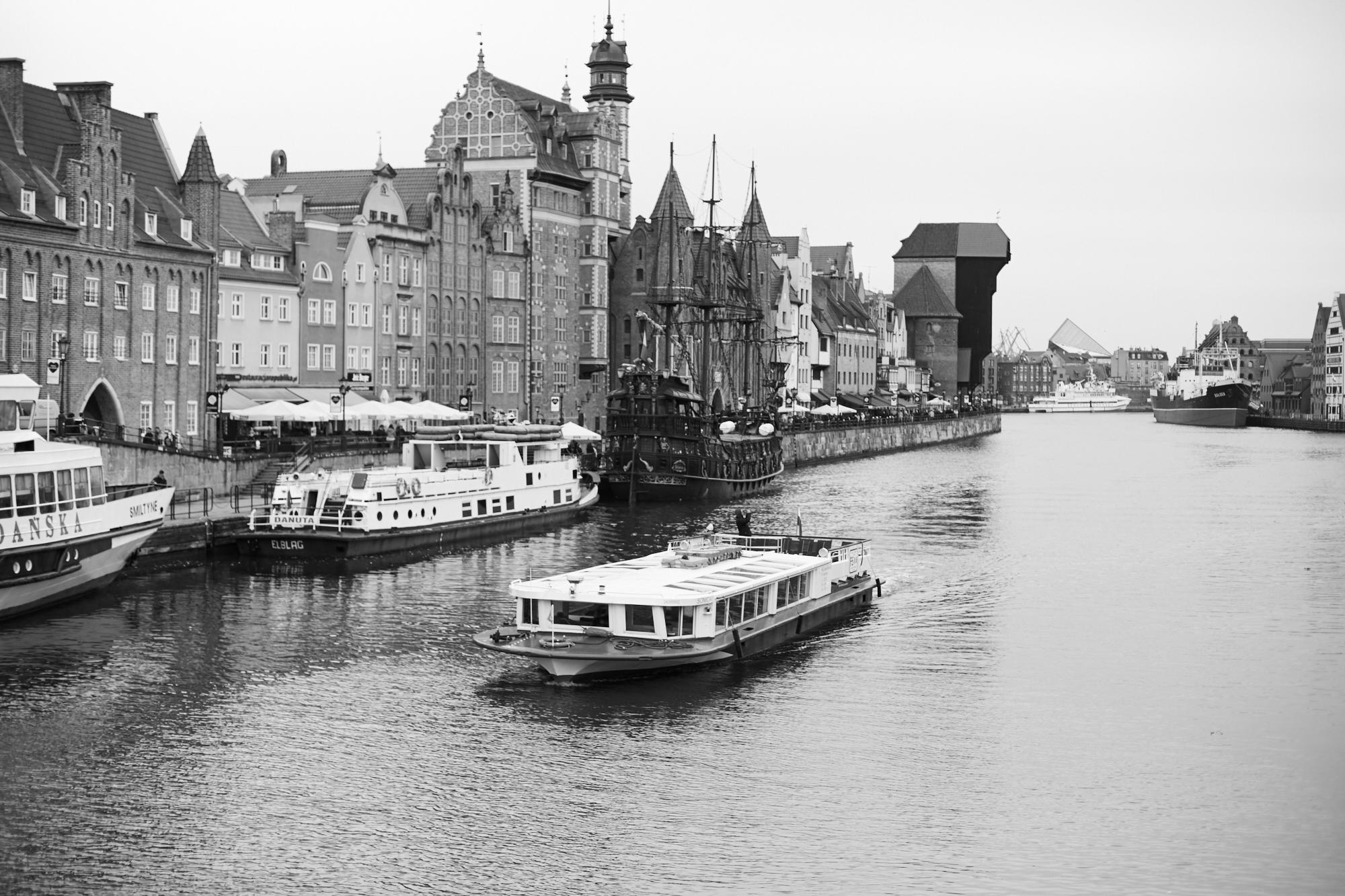 miasto gdańsk marcin biedroń